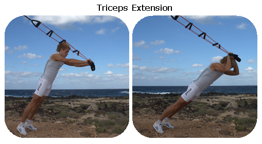 52. Triceps Extensions